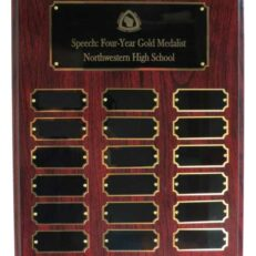 Perpetual Plaque - Speech